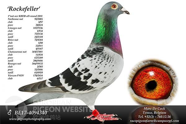 BE17-4094340_Rockefeller.jpg