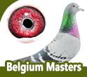 Power of Fly-Belgium Masters
