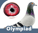 Olympiad Collection