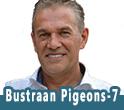BUSTRAAN PIGEONS 7