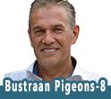 BUSTRAAN PIGEONS 8