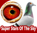 Super Stars Of The Sky