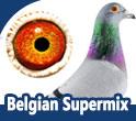 Belgian Supermix