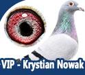 VIP - Krystian Nowak