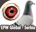 EPW Global - Serbia Champions
