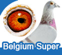 Belgium Super Stars