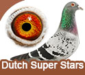 Dutch Super Stars