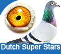 Dutch Superstars