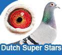 Dutch Super Stars