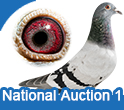 National Auction 1