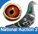 National Auction 2