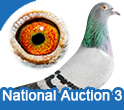 National Auction 3