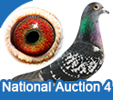 National Auction 4