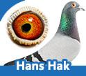 Hans Hak 2