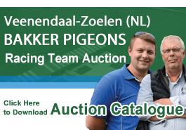 Bakker Pigeons